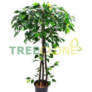 Искусственное дерево фикус