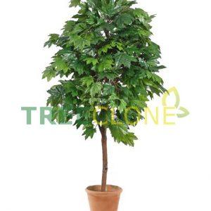Искусственное Дерево Клен зеленый